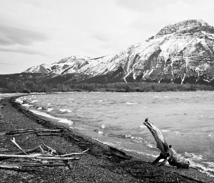 Waterton Lakes - Waterton Park - Alberta - Canada - Swhitdream