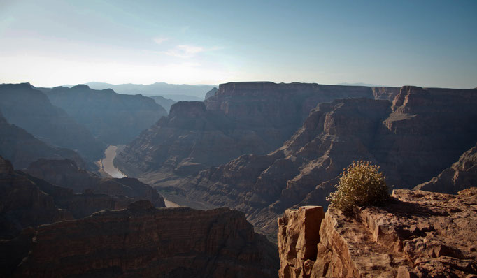 Eagle Point - Grand Canyon - Arizona - Etats-Unis - Swhitdream