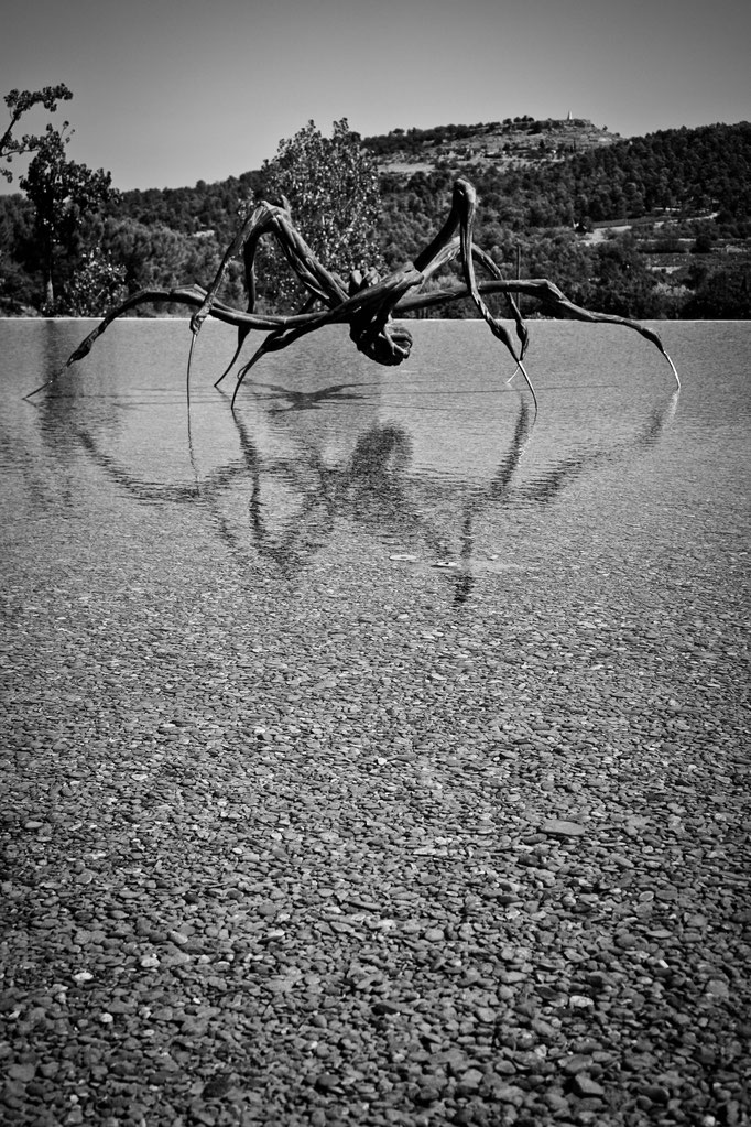 Crouching Spider - 2003 - Louise Bourgeois - Château La Coste - Swhitdream