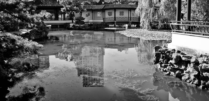 Dr. Sun Yat-Sen Classical Chinese Garden - Vancouver - Colombie Britannique - Canada - Swhitdream