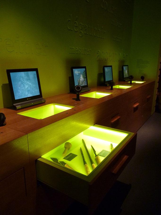 Exposition interactive sur la transformation du bois