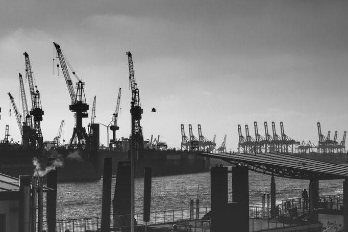 Hafen Hamburg, Februar 2015