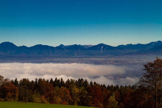 Blick vom Hohenpeißenberg, November 2015