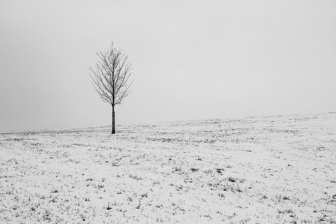 Solitaire - Februar 2018