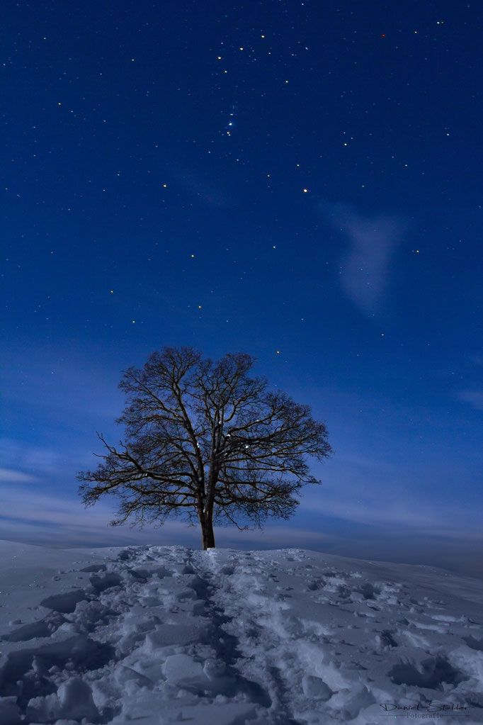 Vollmondnacht im Berner Oberland  -N29-