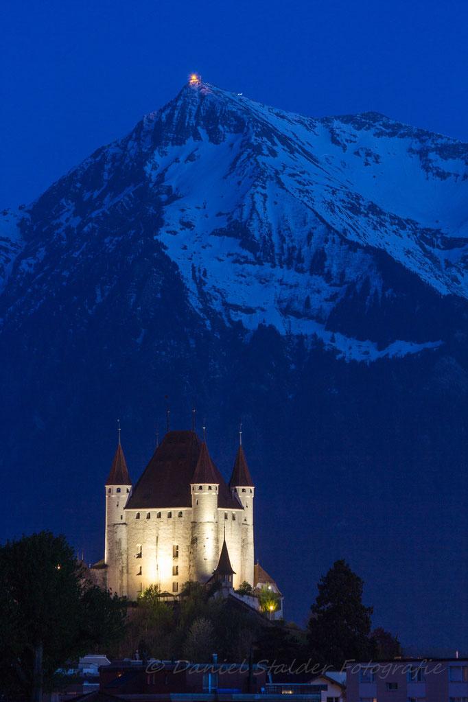 Schloss Thun mit Niesen zur Blauen Stunde   -N26-
