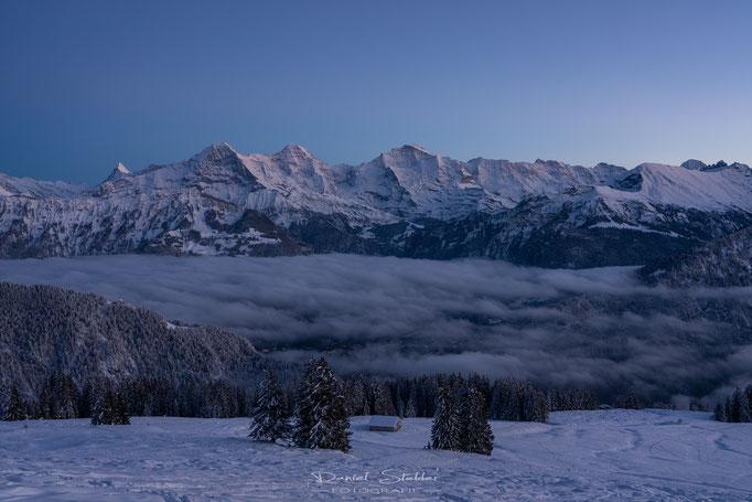 Eiger Mönch und Jungfrau nach Sonnenuntergang -N41-