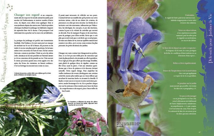 une double-page du livre