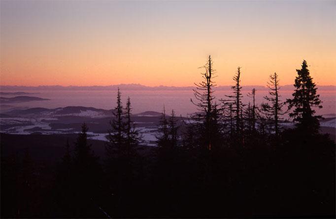 Nationalpark Bayerischer Wald (Foto Pöhlmann): Alpenblick