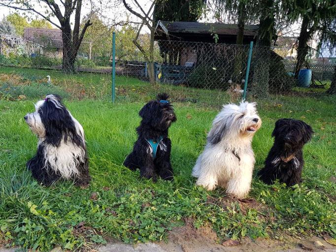 von li. nach re.: Lisha und ihre Kinder Pepper, Han-na und Jobi