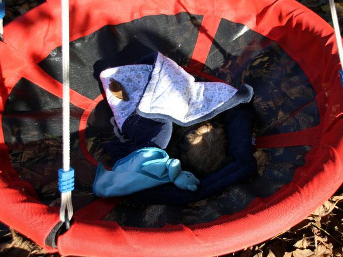 Kahra tankt Kraft in der Nestschaukel mit Kuscheldecke