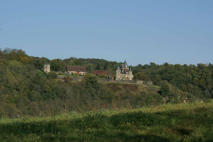 La chateau de Puy Guillon