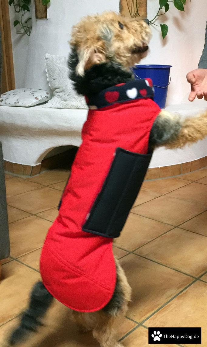 Thermo-Hundemantel, Hundemantel Maßanfertigung