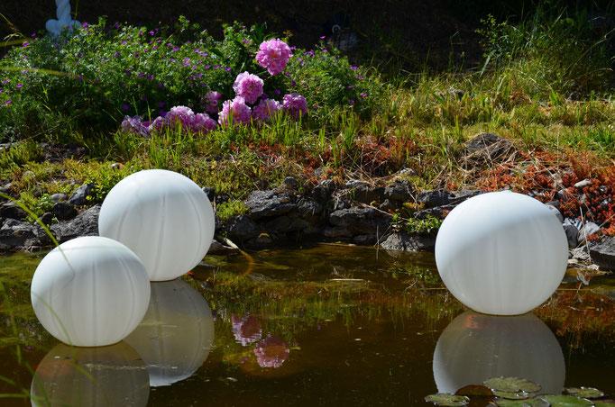 Ballons im Wasser schwimmend. Sie sind mit einer LED Lampe bestückt und können am Abend über eine Fernbedienung zum Leuchten eingeschaltet werden. Super Effekt!