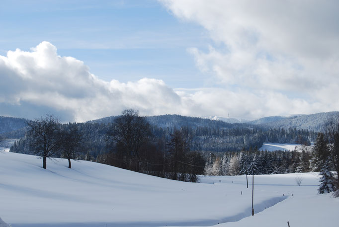 Blick im Winter vom Jörgenhof auf den Feldberg