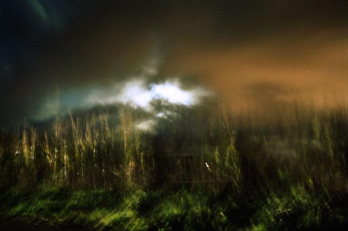 Photo by Franco Carlisi