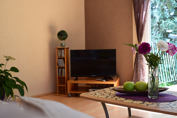 TV mit Satellitenempfang