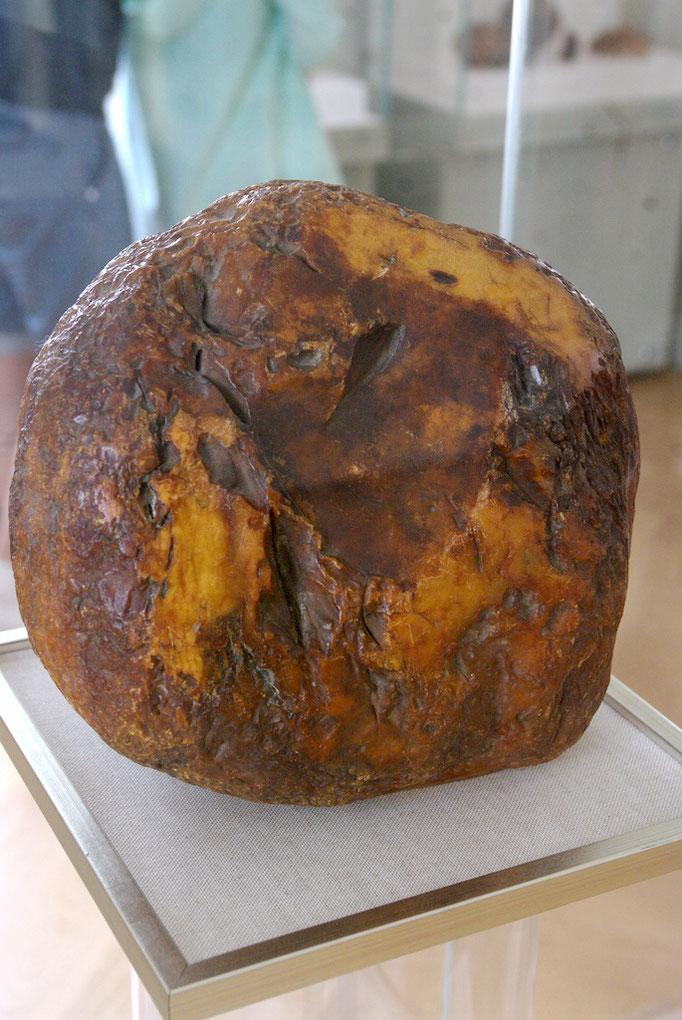 """""""Saulès Akmuo"""" : 3,524 kg ; le plus gros morceau d'ambre"""
