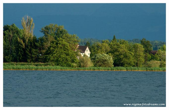Greifensee mit Blick nach Riedikon (9047)