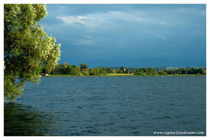 Greifensee mit Blick nach Riedkon und auf die Glarner Alpen (9035)