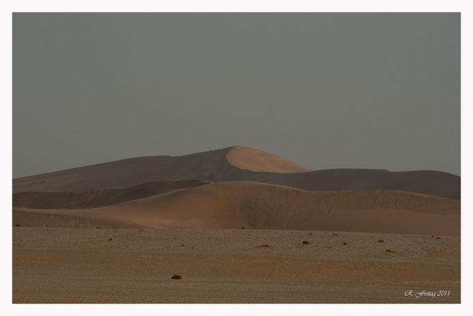 Wüste Namibia (Art.-Nr. 6078)