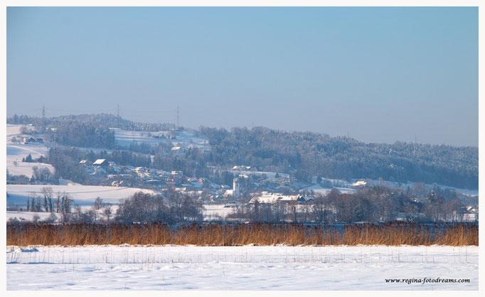 Greifensee mit Blick nach Maur (8809)