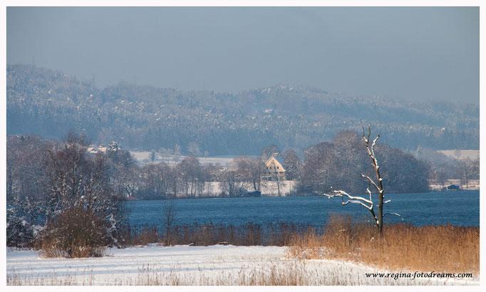 Greifensee (8751)