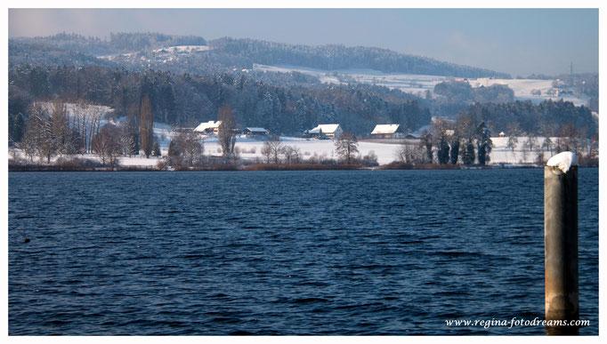 Greifensee (8779)