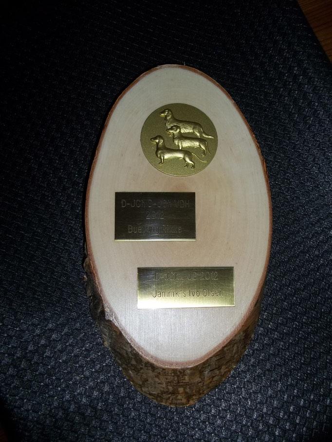 23.02.2013 Rikke hat für den D-JCh 2012 und für den D-JCh VDH 2012 eine Auszeichnung der DTK/Gr. Probsteierhagen bekommen