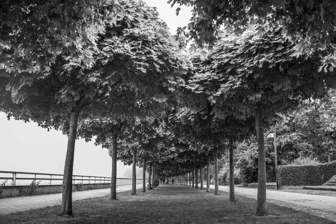 Vegesacker Weserpromenade