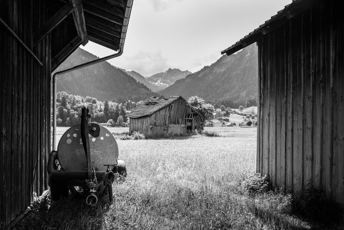 Wiesen bei Oberstdorf