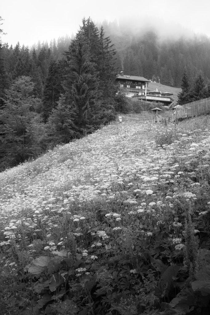 Bergstation Söllereckbahn