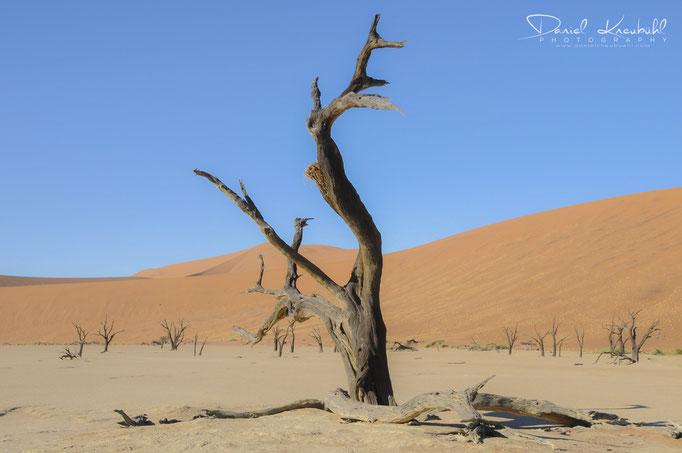 Naturbilder - Sossusvlei (Namibia)