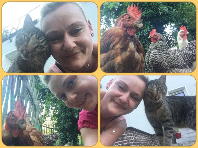 Diego und seine drei verrückten Hühner :-)