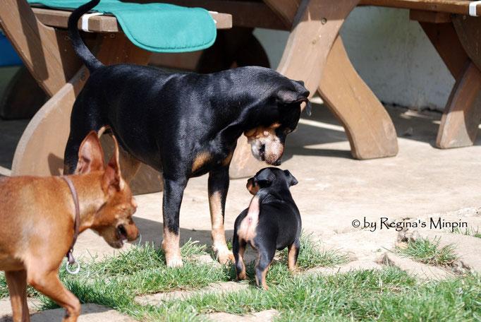 Onkel Remo & Tante Kimi immer mit dabei (Mami natürlich immer ihr Baby im Augenwinkel)