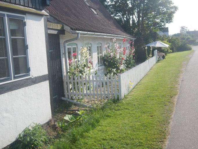 Idyllische Gärten und Häuser auf Tunø