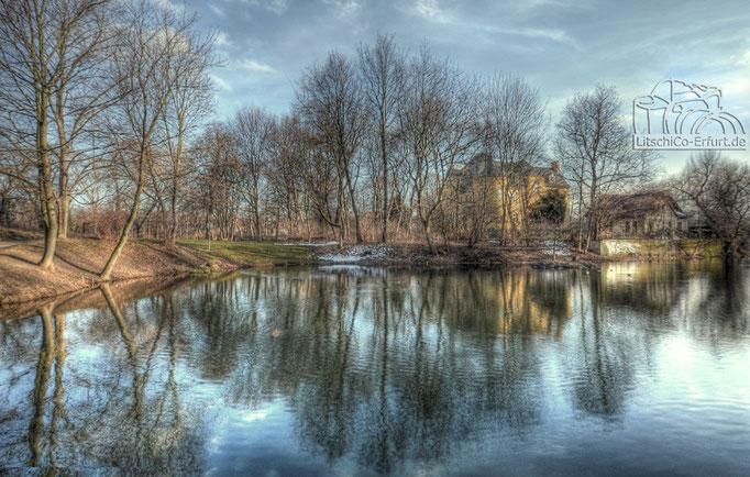 Kleiner See am Luisenpark Erfurt