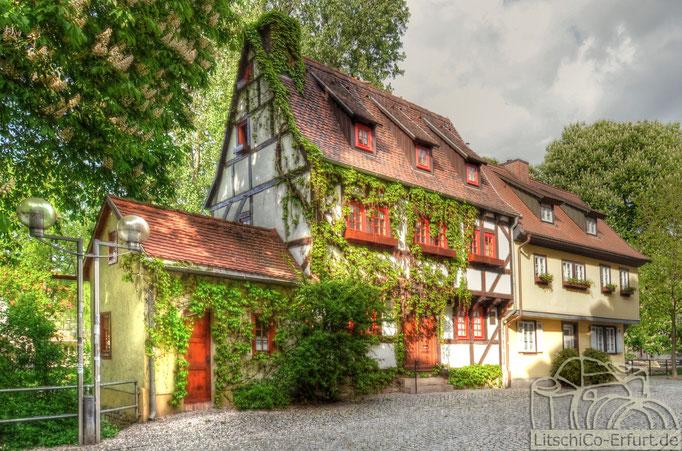Altstadt, Erfurt
