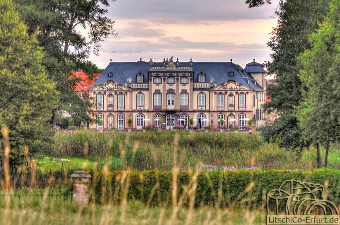 Schloss Molsdorf, Molsdorf/Erfurt