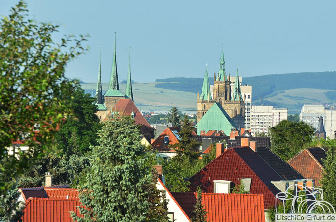 Domblick, Erfurt
