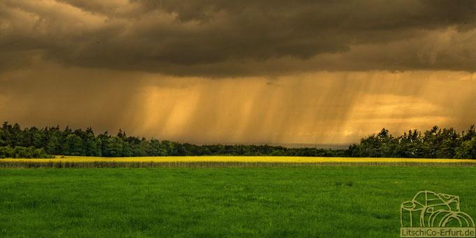 Regen Landschaft