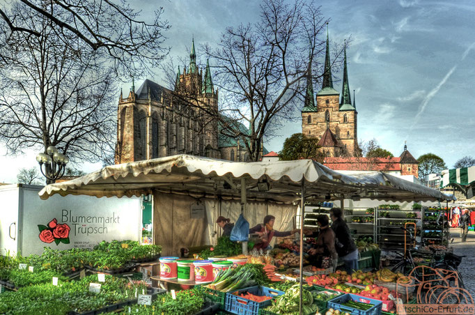 Markt auf dem Domplatz in Erfurt