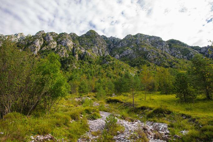 Habitat of Vipera aspis francisciredi in northern Italy