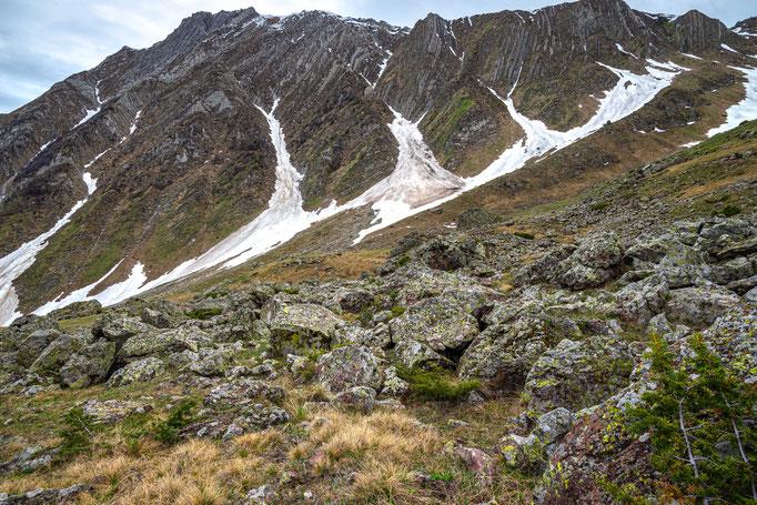 Habitat of Vipera dinniki in northern Georgia