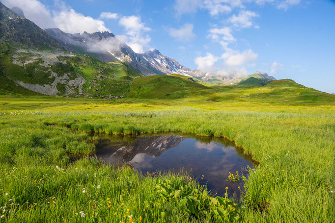Habitat of Vipera aspis aspis 'atra' in eastern France