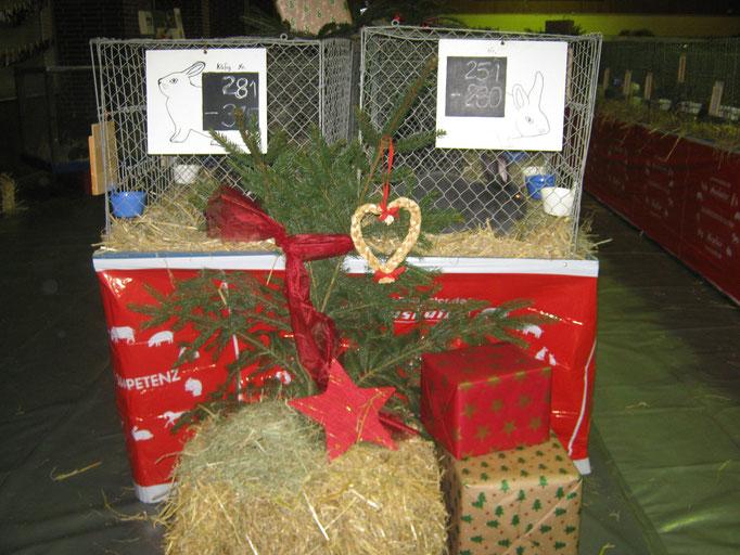 Einblick in die weihnachtlich gechmückte Halle