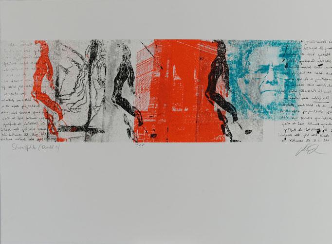 Schreibfehler (Donald_1), Offset-Lithografie, 56x76 cm, 2014