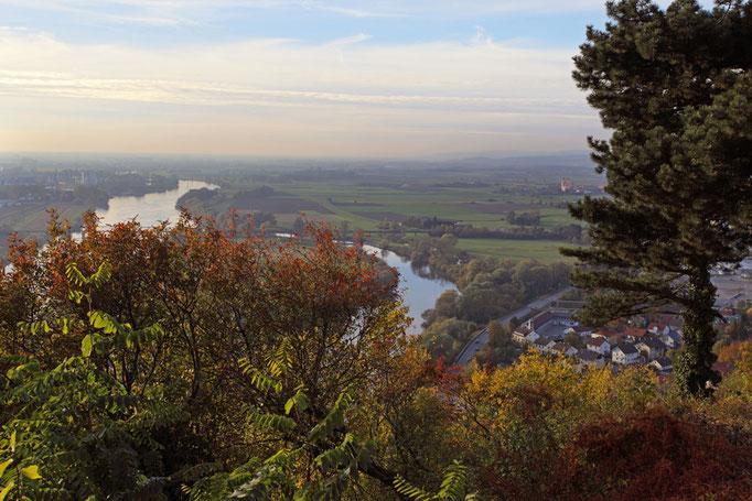 Herrlicher Bick auf die Donau, Foto: Landratsamt Straubing-Bogen