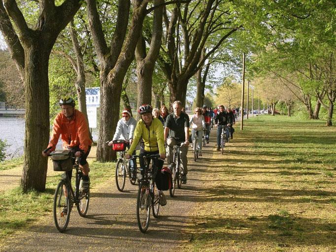 Tolle Radwege für Kurztouren und Langstrecken