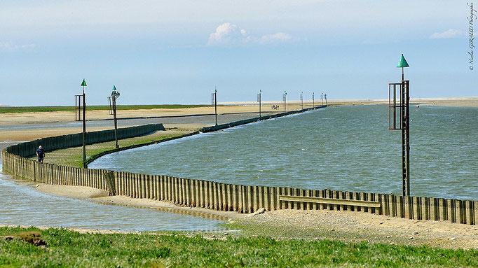 Baie de Somme - Picardie © Nicolas GIRAUD
